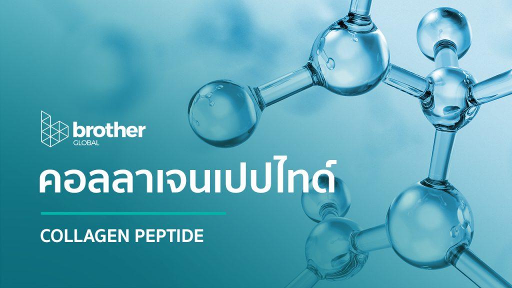 Collagen: คอลลาเจนเปปไทด์