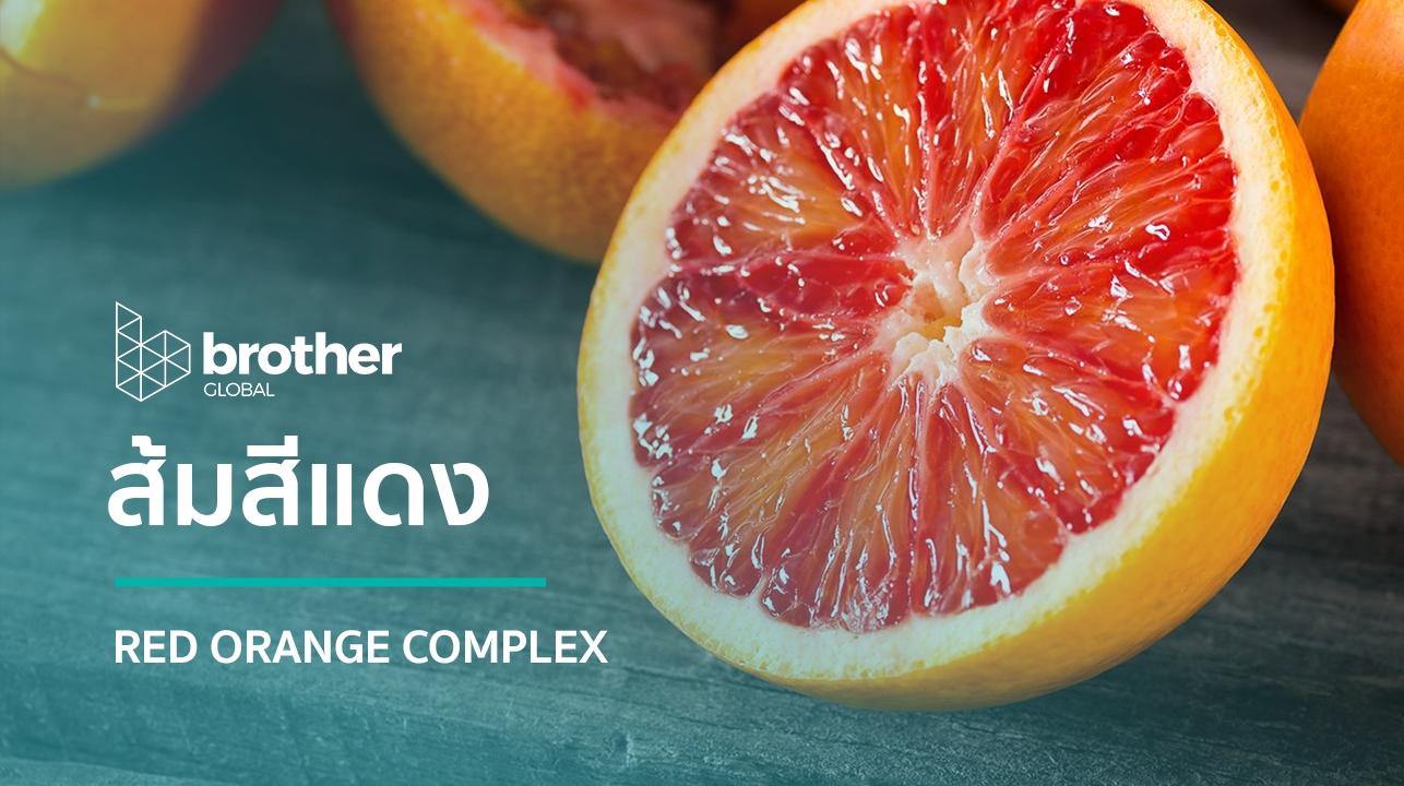 Red Orange Complex : ส้มสีแดง
