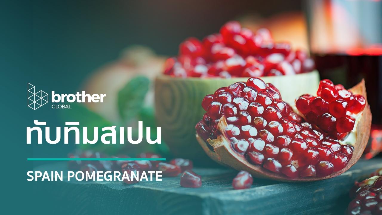 Spain Pomegranate : ทับทิมสเปน